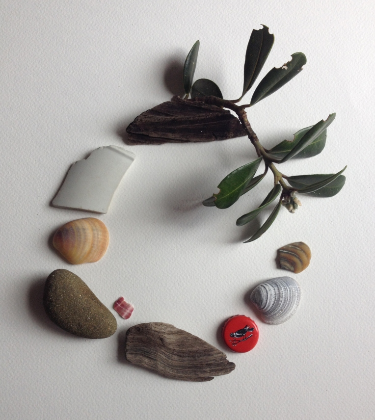 Pohutukawa and shells