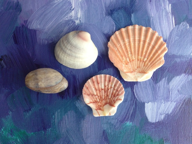 Shells on paintings