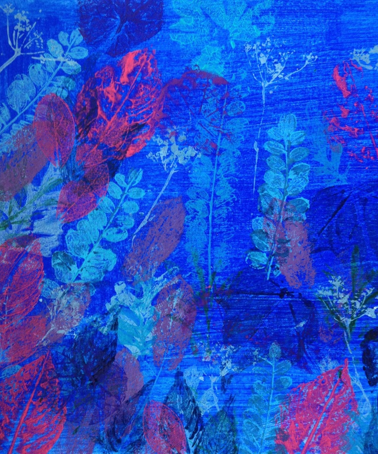 Kowhai in blue