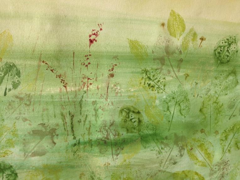 Mangrove biome, detail