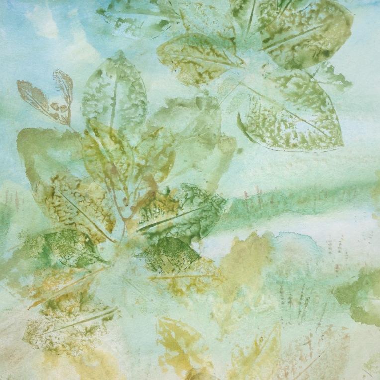 Mangrove prints2