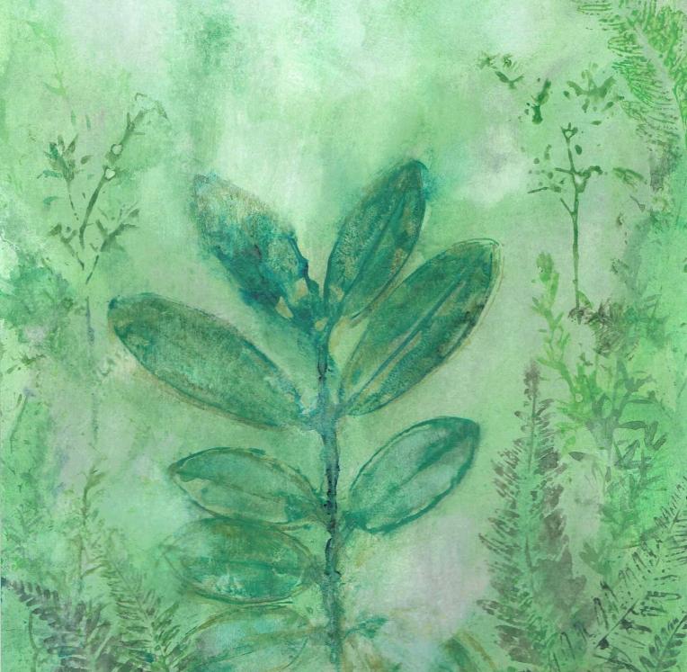 Climate leaf - Pohutukawa cropped