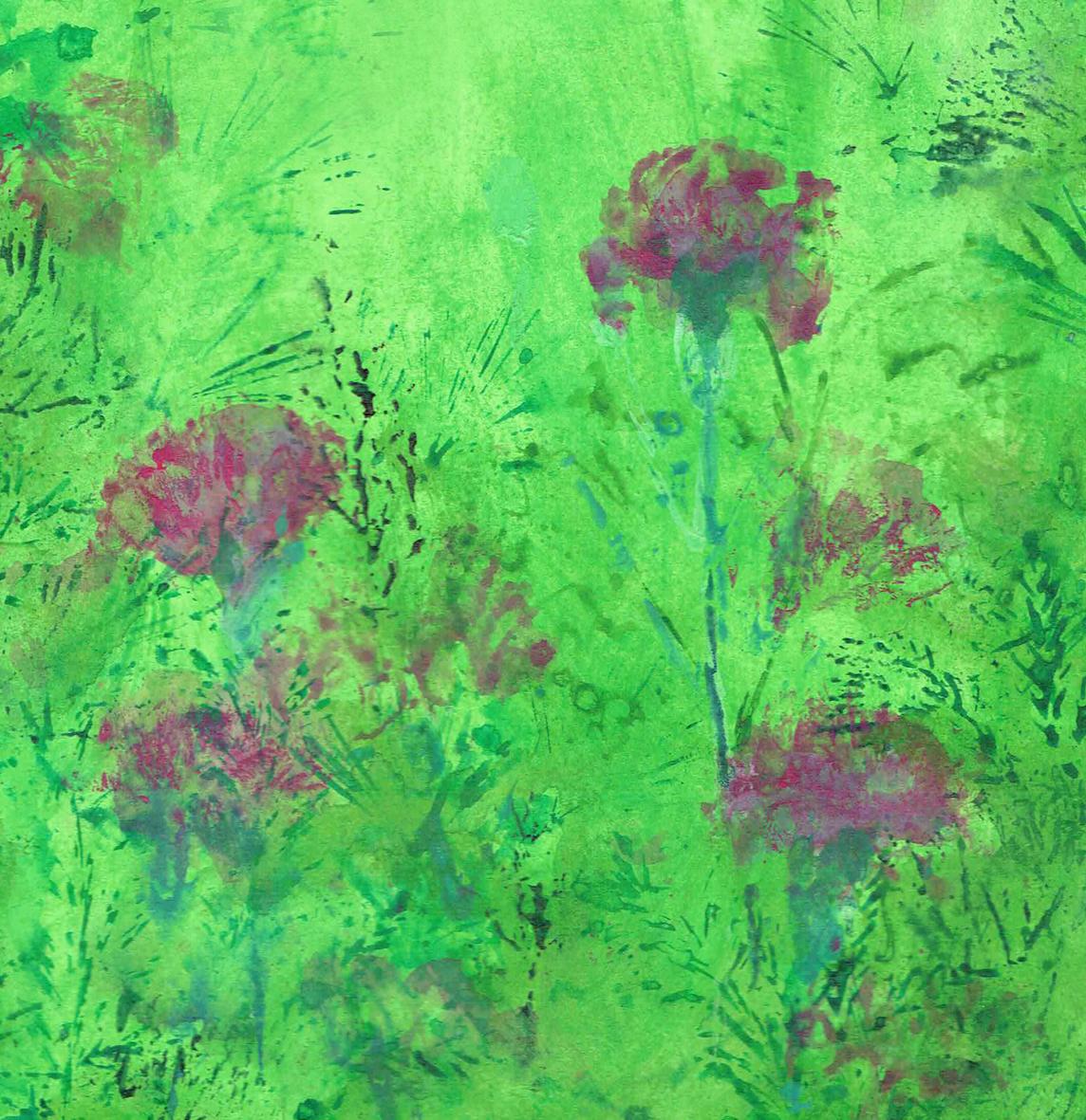 Carnations LR
