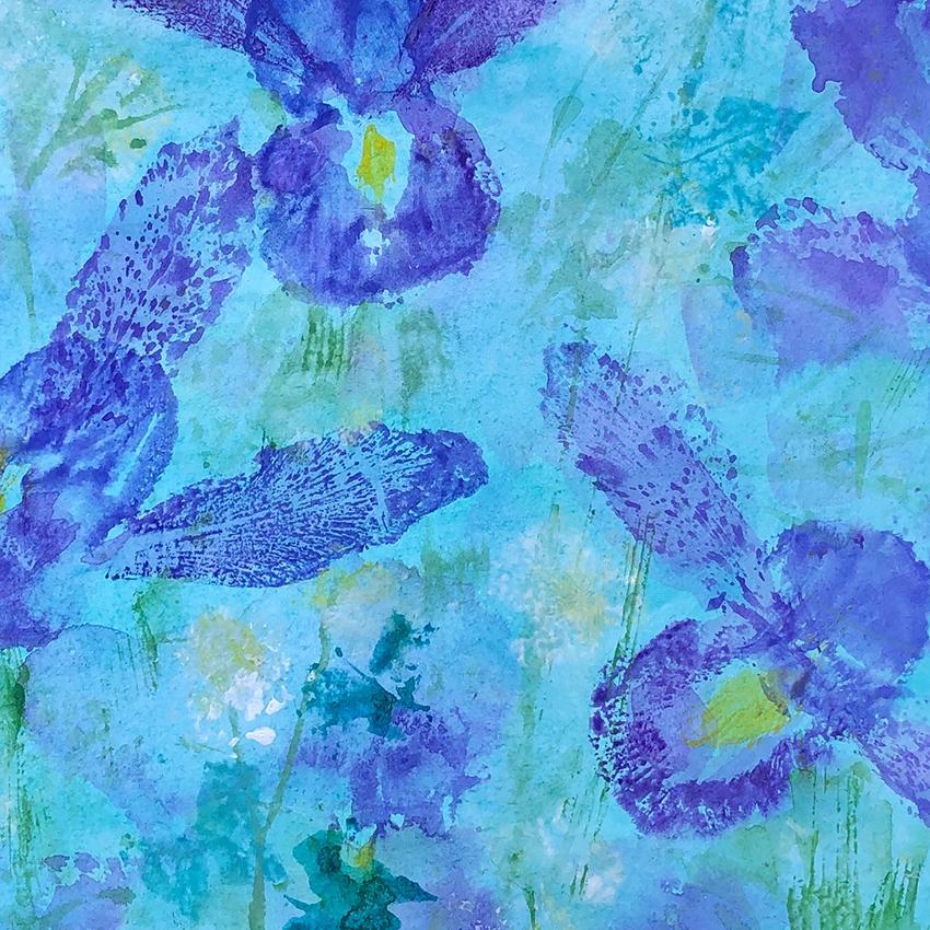Irises sml