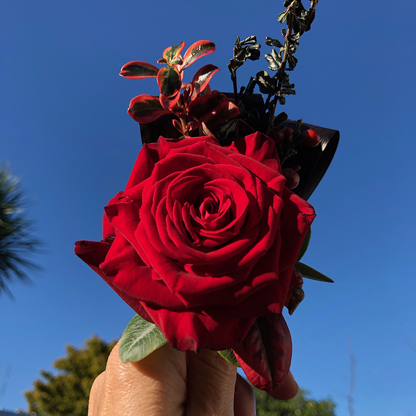 Red rose corsage sml